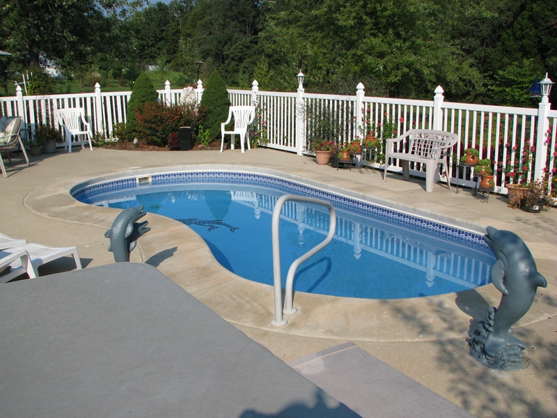 Kidney Model Pools The Pool Guyz